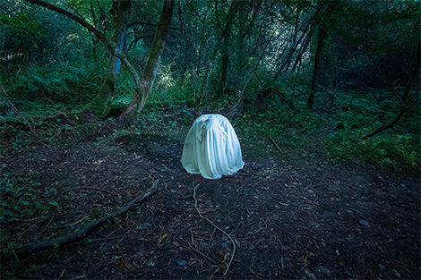 Carlotta Gambato, 'In to the woods'