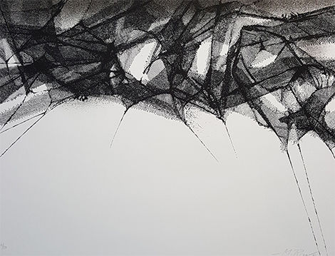 Obra de Manuel Rivera, Museo de Arte Contemporáneo