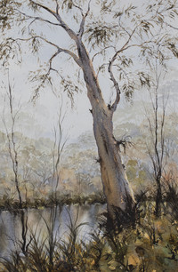 Upper Clarence Gumtree 31cm x 54cm. Available