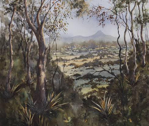 Wollumbin Valley 44cm x 50cm. Available
