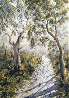 Barrington Tops - 50cm x 70cm. SOLD
