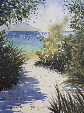 Shelly Beach 26cm x 36cm. Sold.