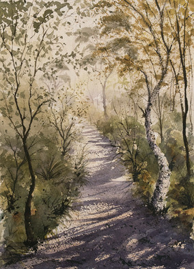 Tallow Trail 21cm x 31cm. Available