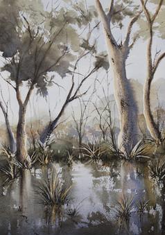 Belongil Creek 30cm x 40cm. Available