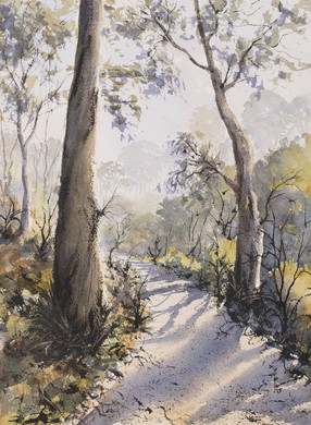 Wooli Trail 30cm x 40cm. Sold
