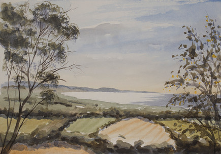 St Helena Road Sketch 21cm x 28cm. Available