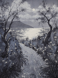 Shelly Beach Nocturne 30cm x 40cm. SOLD