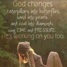 God changes caterpillars into butterflies,