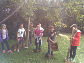 Year Six Residential