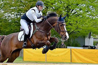 Gelders kampion L springen 2012