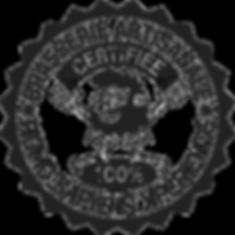 Logo Homo Sapiens XP.