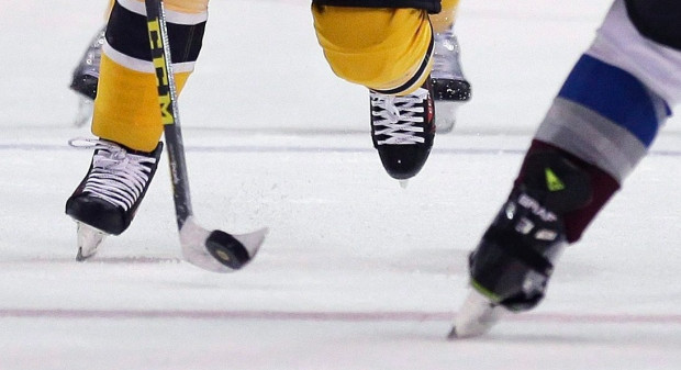Hockey skates NHL.jpg