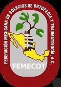 FEMECOT_Medium.png