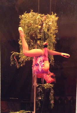 Cirque Danse Show Illusion Spectacle Magie