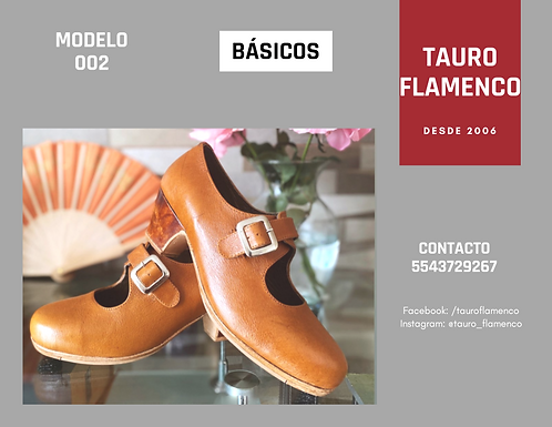 Zapato modelo 2