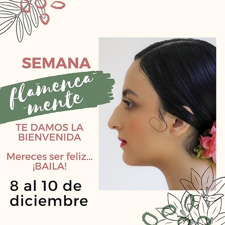 flamenca mente.png
