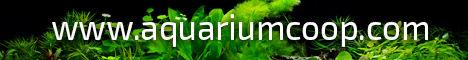 Aquriumcoopbanner.jpg