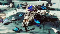 Papillons sur crâne de buffle