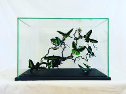 Insectes verts sur branche