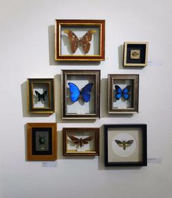 Facade @ Next Door Gallery