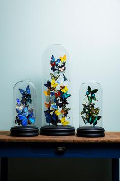Trio de dômes multicolores