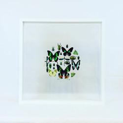 Cercle vert 50x50cm