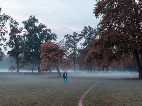 5 canzoni per scappare nella foresta musicale di Kupla - Top of the Shots