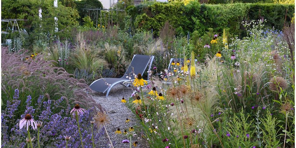 Mehr Natur in unsere Gärten