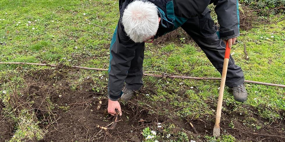 ABGESAGT: Arbeitseinsatz Wildblumenwiese