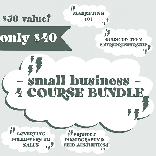 Small Biz 4 Course Bundle