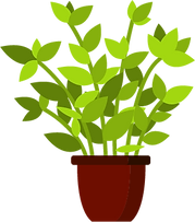 plant6.png