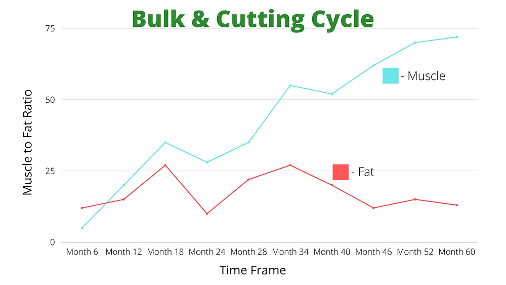 This shows how a bulking and cutting cycle works over time. The longer you do it the more muscle to ratio you end up with.