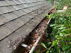 Gutter Cleaning Macon