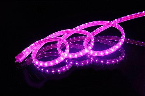 UL Listed, PINK, Super Bright SMD5050 120 Volt LED Strip Light