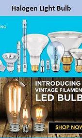 2 halogen bulb.jpg