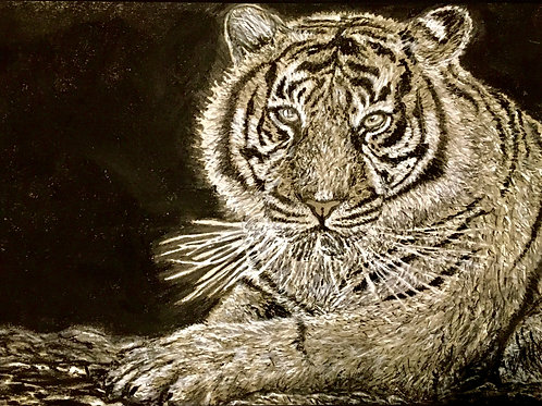 Tiger In The Night, Original Drawing