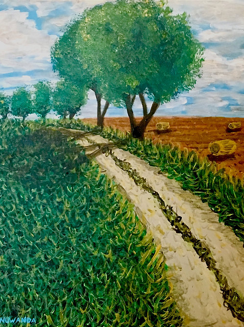 Rural Spanish Path