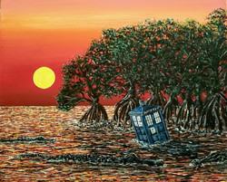 Doctor In The Everglades