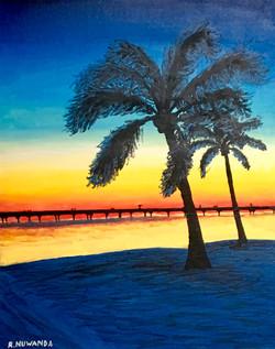 Palm Trees South Florida