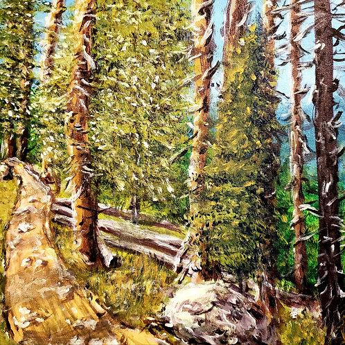Woodland Trail, Original Painting