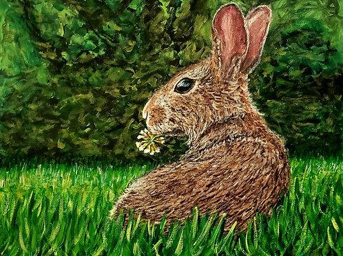 Marsh Rabbit, Original Painting