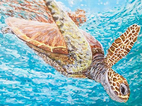 SOLD. Diving Turtle, Original Painting.