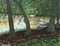 Swannie's Pond