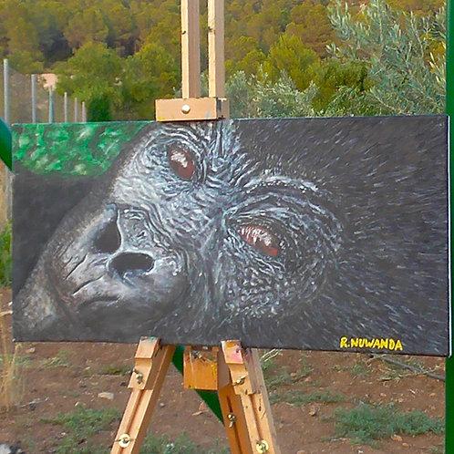 Curious Gorilla, Fine Art Print