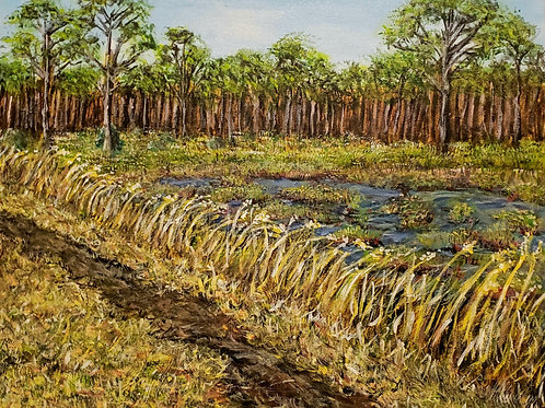 Pines Glades Natural Area Plein Air, Original Painting