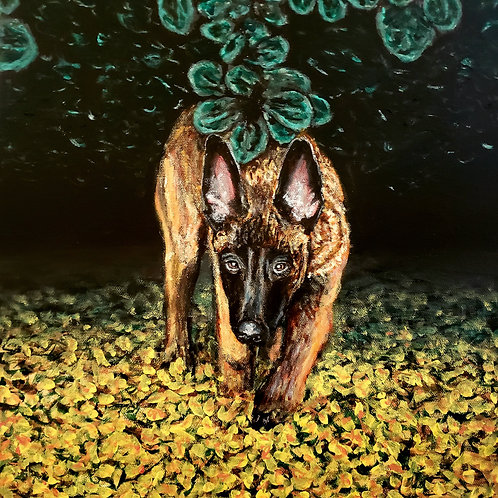 Belgian Malinois, Original Painting