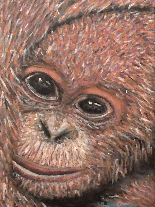 Orangutan, Original Painting