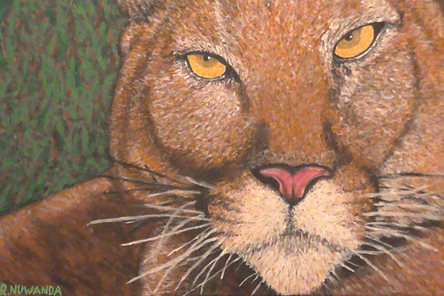 Florida Panther, Original Painting