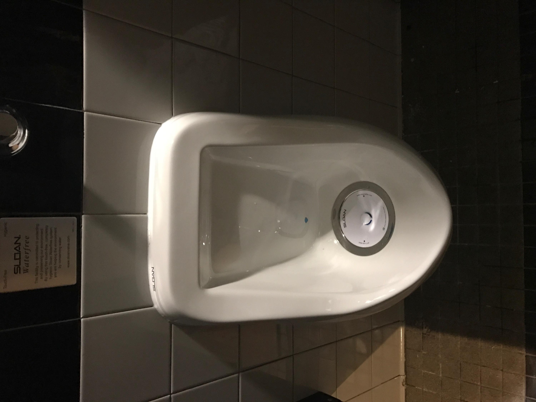 Waterless Urinal   SJPI