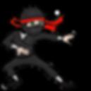Ninjakids.png